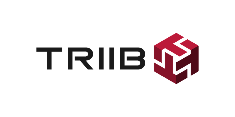 Image result for triib
