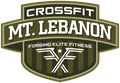 CrossFit Mt Lebanon
